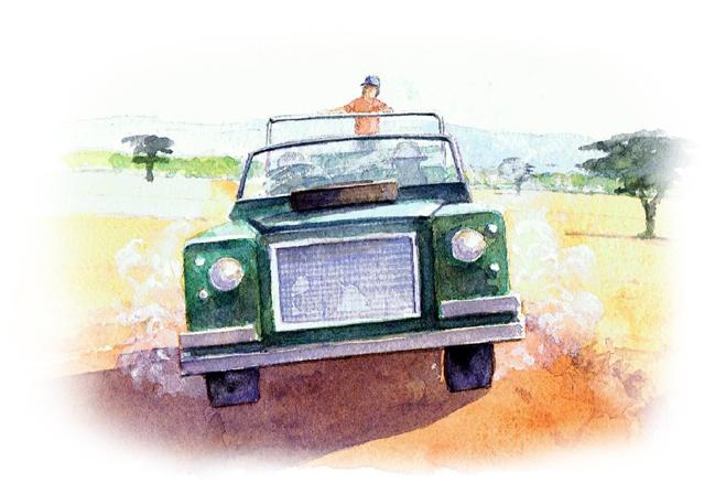 My Safari Adventure